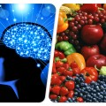 Gaples Institute Food and Mental Acuity