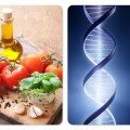 Gaples Institute Diet DNA