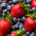Blueberry, strawberry, raspberry and blackberry patterned background material.